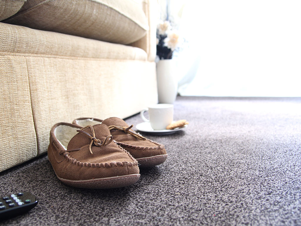 Pair of moccasins sitting next to couch on carpeted floor